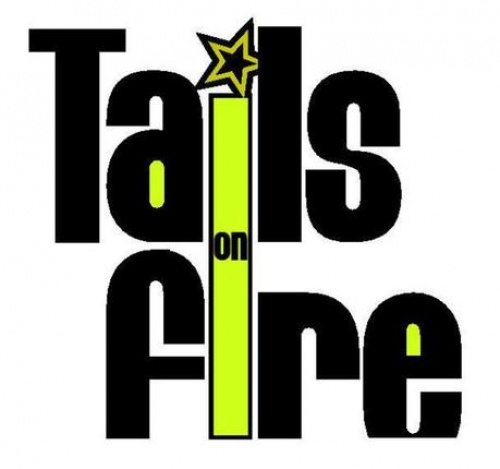GIG REVIEW ::Tails On Fire. Indo German Urban Mela.