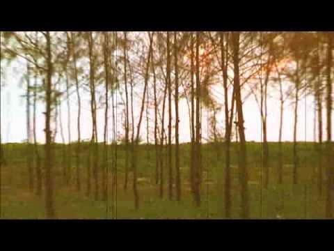 Kaav :: A New Song