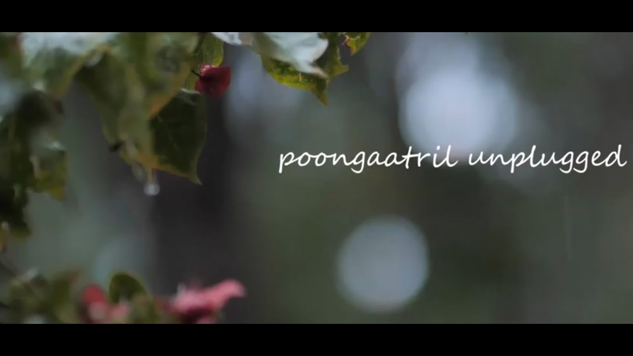 Poongaatril Unplugged- New Releases