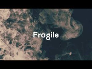 Ram Sampath- Fragile- Score Indie Reviews