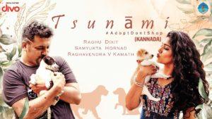 Raghu Dixit & Samyukta Hornad- Tsunami- Score Indie Reviews