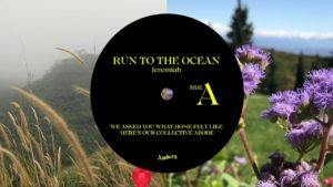 Jeremiah de Rozario- Run To The Ocean finds- Score Indie Reviews