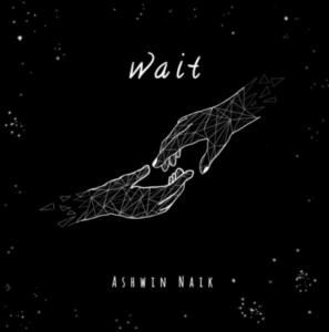 Ashwin-Naik-Wait-Score Indie Reviews