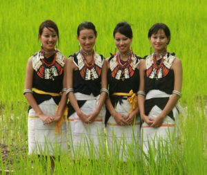 Band of the month: Tetseo Sisters